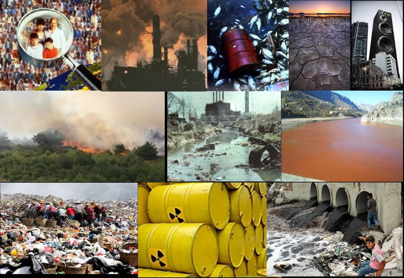 çevre kirliliği ve çevre kuruluşları