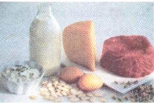 protein örnekleri