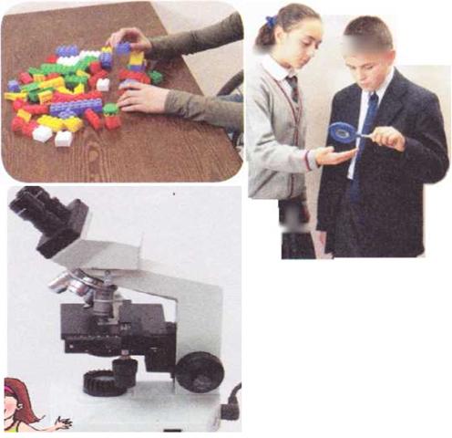hücre ve mikroskop