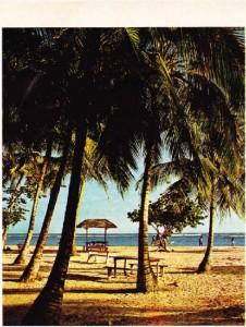 Grande-Terre'in doğu kıyısındaki Sainte-Anne Plajı