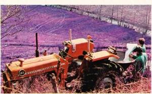 Azotlu gübrenin arkasında hazne olan traktörle dağıtımı