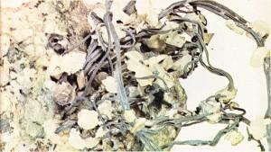 Bir kuvars gangının içine sıkışıp kalmış doğal haldeki gümüş