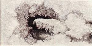 Bir güneş lekesinin yapısı