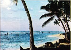 Hint Okyanusu Sri Lanka'da dalyanlar üstünde bekleyen balıkçılar