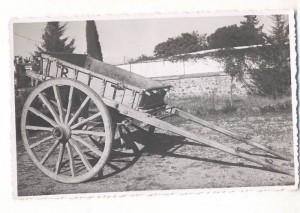 İki Tekerlekli at arabası