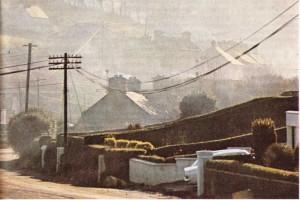 Irlanda Cumhuriyeti'nde Cork dolaylarından bir görünüş