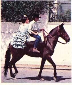 İspanya geleneksel kıyafetli çocuklar at ile geziyor