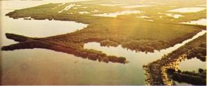Po ırmağının deltası