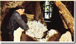Kâğıt yapımında paçavraların öğütme öncesi ayrımı ve hazırlanması