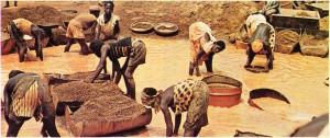 Kamerun'da altın yıkayan işçiler