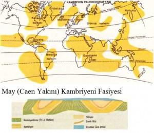 kambriyen paleocografyası