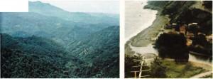 karadeniz bölgesi bitki örtüsü ve kıyısı