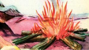 ilk ateşin bulunuşu