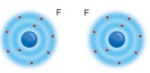 Şekil 4.19. Flor atomları aralarında iyonik bağ oluşturamaz.