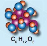 C6H12O6 bileşik modeli