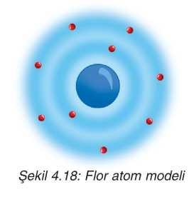 flor atom modeli