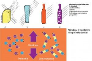 mikrodalga kullanım alanları