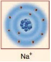 pozitif yüklenmiş sodyum elementi