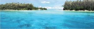 denizler neden mavidir