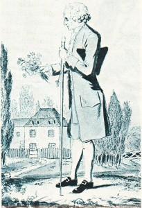 Jean-Jacques Rousseau'yu gösteren bir resim.