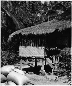 kazıklar üzerine yapıılmış ev