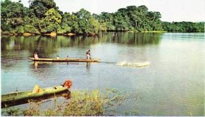 Port-Gentil ve Lambarene arasında Ogooue ırmağı.