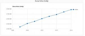 bursa nüfus grafiği