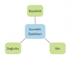 kuvvetin özellikleri kavram haritası