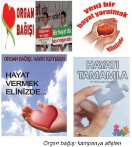 organ bağışı posteri