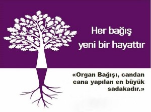organ nakli sloganı