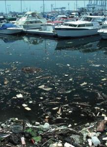 çöpler suda neden batmaz