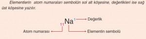 atom numaraları