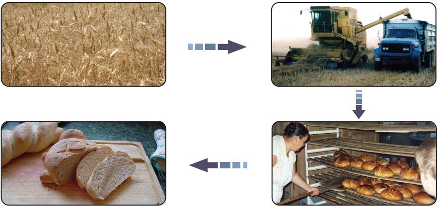 üretime katkıda bulunmak şeması