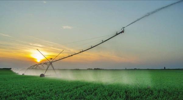 Sulamanın tarımsal üretime katkısı