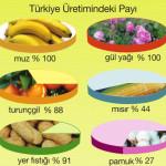 akdeniz tarım ürünlerin ülke ekonomisine katkıları