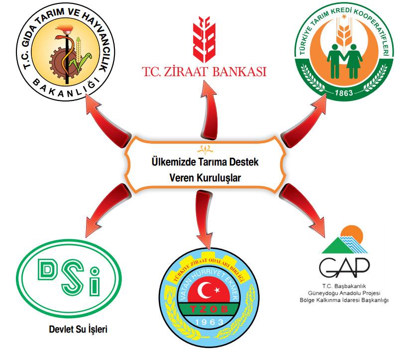 üllkemizde tarıma destek veren kuruluşlar