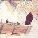 nesli tükenen kelaynak kuşu