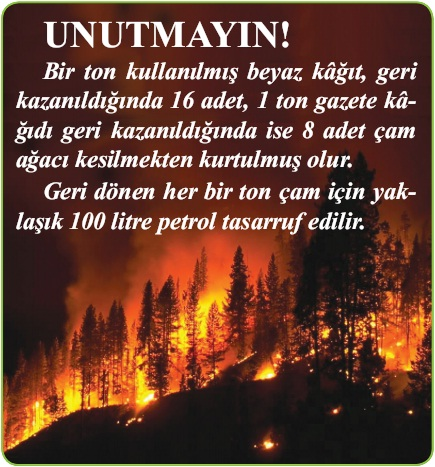 ormanların yok edilmesi