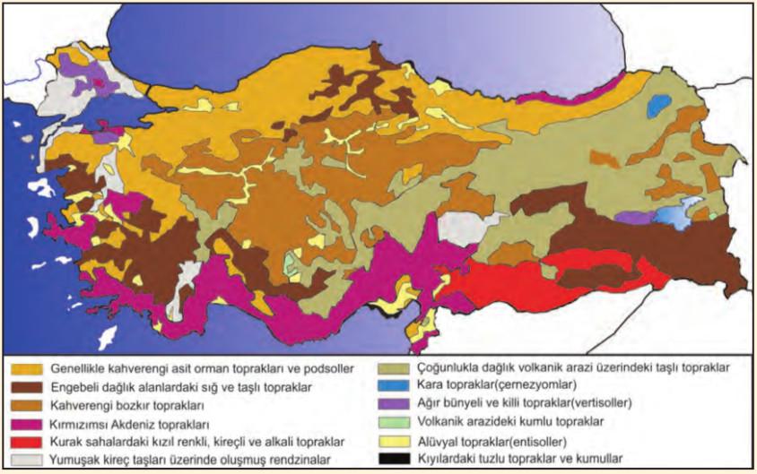 Türkiye'de toprak tipleri