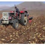 tarımda toprağın kullanılması