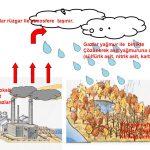 Gazlar yağmur ile birlikte. Çözünerek asit yağmuruna dönüşür. (sülfürik asit, nitrik asit, karbonik asit) Kükürt dioksit. Azot oksit. Karbon gazları. Asit yağmurları bitkileri öldürür. Nehirleri kirletir.